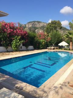 Private pool with six cushioned sunbeds and in built BBQ