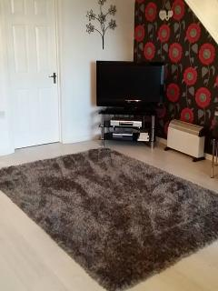 large flat screen in lounge with a DVD player. a selection of DVDS are available for your use in the