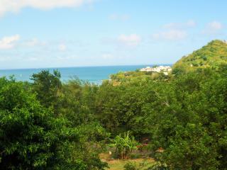 Patio Oceanfrront View