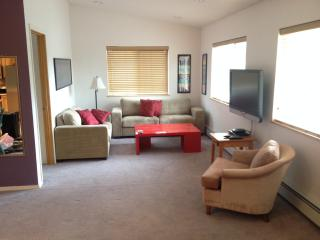Living area, with flat screen TV, highspeed WiFi, La-Z-Boy fold out queen sleeper sofa.