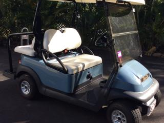 Your Golf Buggy - fun way to get around 'Hamo'
