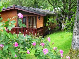 Nevis 4 star Chalet, Fort William