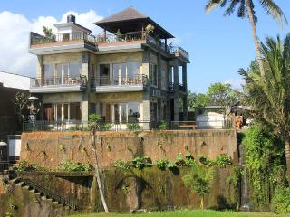 3 Bdr Bali Villa overlooking rice paddies