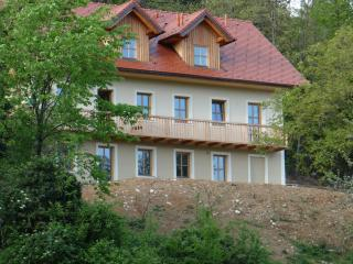 Sevnica, Slovenia, 3 apartments in house živa