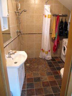 Ground floor bath with shower and washing machine