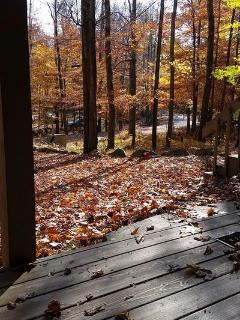Front deck view of fall foliage