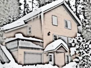 Cedar Grove in Winter