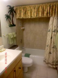 Downstairs Bathroom full tub/shower