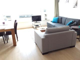 Central and luxurious apartment, Haarlem