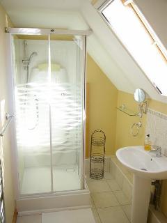 Limousin Farmhouse  - Ensuite Shower
