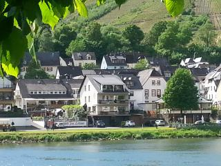 Moselle-holiday-appartment, 3.Floor 'Elbling', Zell