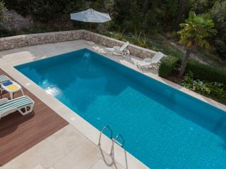 Luxury twin villas for 16 people with pool, Dubrovnik