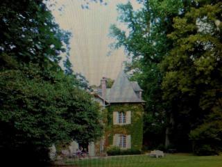 Manoir de la gavouyere, Saint-Aubin-des-Landes