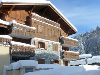 Les Cristallieres, A2, smart ski Apt. FREE wifi, Les Carroz-d'Araches