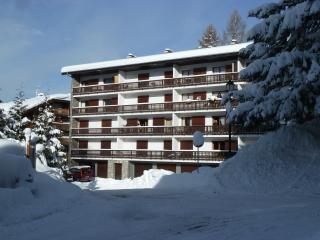 Apartment Le Mole, centrally location spacious APT, Les Carroz-d'Araches