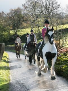 Horse riding in the countryside available close by