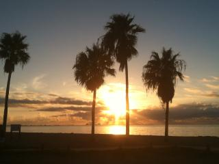 another beautiful morning at Corpus Christi Beach Condos