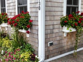 Historical Cobbler's Cottage-Luxury Renovated, Provincetown
