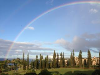 Golf and Ocean View Retreat in Kapalua/Discount Go