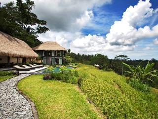 Villa Kelusa, Tegalalang