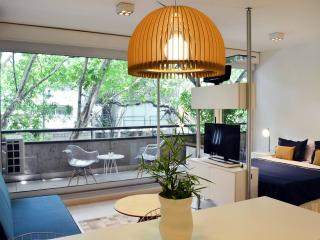 Charming Studio Apartment in Palermo Hollywood, Buenos Aires