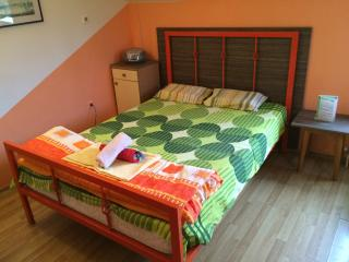 Motel style apartment with real LUX beds, Novi Sad
