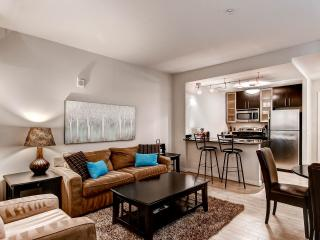 Lux 1BR near White House, Washington DC