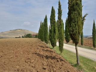 Affordable Elegant Villa near Siena, San Quirico d'Orcia