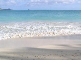 Kailua Ohana, 2BR, A/C, Steps to Beach