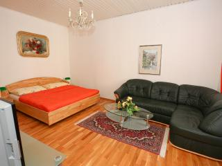 Cosy Apt Near Center& Belvedere, Apt#10, Vienna