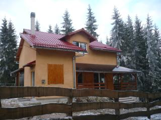 Spacious villa in Marisel, Transylvania, with terrace and garden surrounded by lush forest