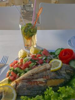 Fresh grilled sea bass & salad at the Cafe
