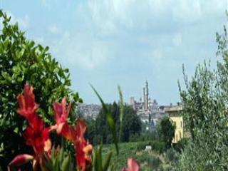 View of Siena from the Villa and from the park