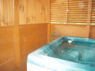 Lake Mohawk close to Dollywood w/view & free Wi-Fi, Pigeon Forge