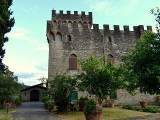 Castello di Ferrano, Pelago