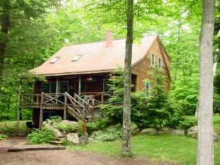 Beach Access Cabin Lake Kanasatka (FOR43Bplr), Moultonborough