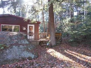Lake Pemigewasett Cottage (DAS17B), New Hampton