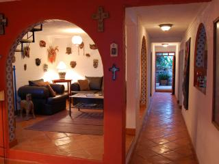 Living room and hallway leading to patio garden with lime tree
