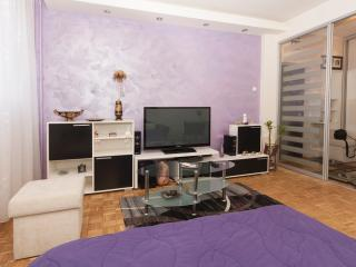 Arena Superb studio, sleeps2, wifi, parking, Belgrado