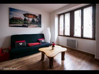 Apartment 'La Petite Venise N°1' - All inclusive, Colmar