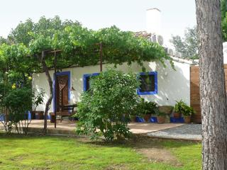 Cortijo Algabia, nice cottage with pool in Granada, Alhendin