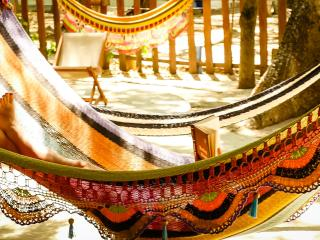 Relax and enjoy our hammocks