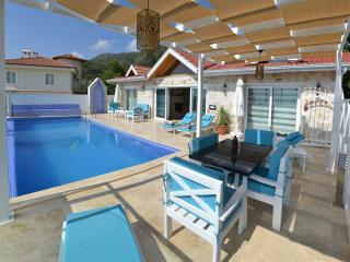 İncredible Villa in İslamlar for 4 persons 093, Kalkan