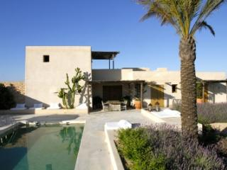 Immaculate 4 Bedroom Villa in Formentera
