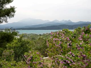 Capriccioli Fillirea, Arzachena