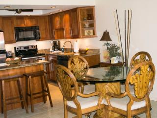 Ocean View 2 BR/2 BA with A/C and wi-fi, Kihei