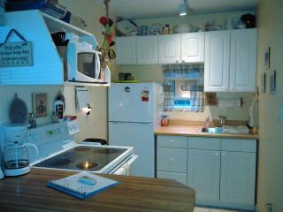 Full Kitchen! Blender to Steamer