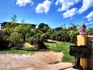 Moringa Ingadi Villa, Treasure Beach