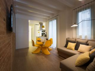 TOP CLASS NEW 2BD AP Sun Lift Metro HiSpeed Wifi, Barcelona