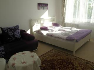 Apartment Meixner Mariánské Lázně